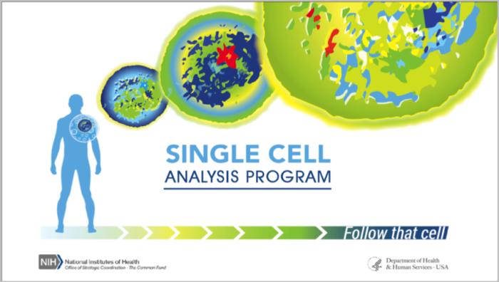 单细胞测序方法比较