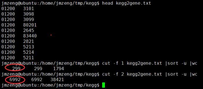 下载最新版的KEGG信息