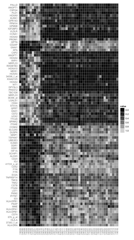 R绘图基础(10)热图 heatmap